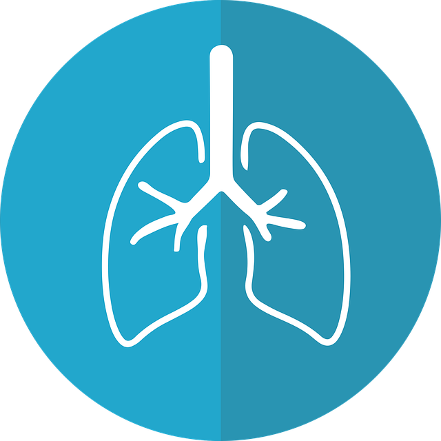 Lunge stärken