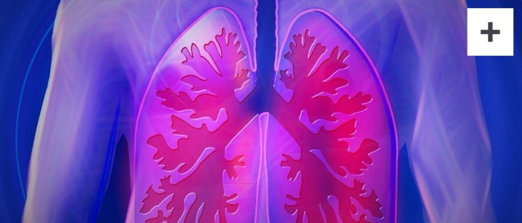 Lunge Stärken Methode